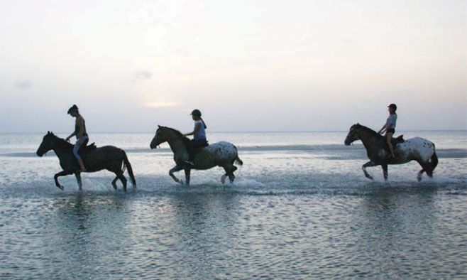 Horse riding in Zanzibar